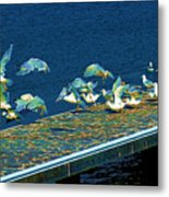Psychedelic Gulls Metal Print