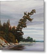 Ptarmigan Bay Metal Print