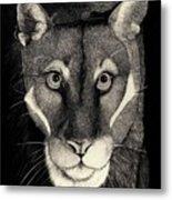 Puma Metal Print