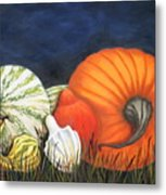 Pumpkin And Gourds Metal Print
