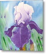 Purple Metal Print