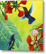 Purple-throated Caribs And Flamboyant Metal Print