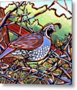 Quail Metal Print by Nadi Spencer