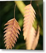 Quaking Grass Metal Print