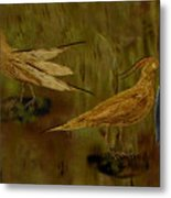 Rain Bird Hunt Metal Print