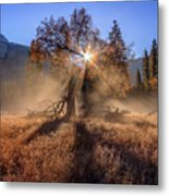 Rainbow In Yosemite Valley Ice Fog Metal Print