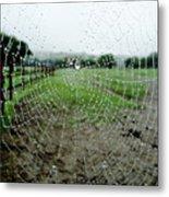 Raincatcher Web Metal Print