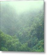 Rainforest Valley Near Hana Metal Print