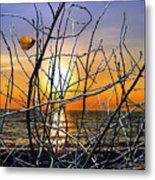 Raising Branches Metal Print