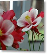 Red And White Flower Metal Print