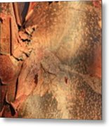 Red Bark Nature Abstract Metal Print