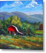 Red Barn On Cane Creek Metal Print