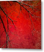 Red Morning Metal Print