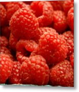 Red Raspberries Metal Print