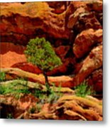 Red Rocks  Colorado Metal Print
