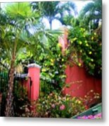 Red Wall And Palms Metal Print