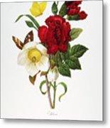 Redoute: Hellebore, 1833 Metal Print
