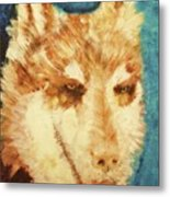 Red's Wolf Metal Print