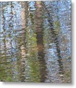 Reflecting Trees Metal Print