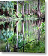 Reflection Of Cypress Trees Metal Print