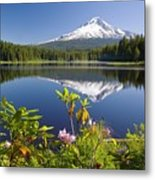 Reflection Of Mount Hood In Trillium Metal Print by Craig Tuttle