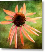 Remembering Summer Metal Print