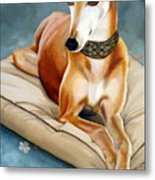 Rescued Greyhound Metal Print by Sandra Chase