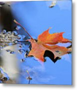 Resting On Gold And Blue Metal Print