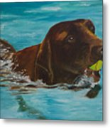 Retriever Play Metal Print