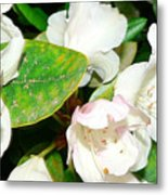 Rhododendron And Bee Metal Print