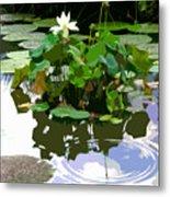 Ripples On The Lotus Pond Metal Print