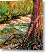 River Hafren In September Metal Print