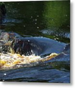 River On The Rocks II Metal Print