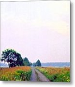 Road Through The Fields 3 Ae Metal Print