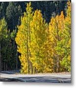 Road To Autumn Metal Print