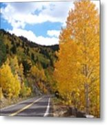 Road To Fall Metal Print