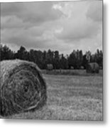 Rolls Of Hay Metal Print by Southern Photo