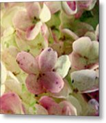 Romance In Pink And Green Metal Print