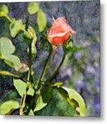 Rose Elegance Art Metal Print