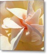 Rose Spiral Flower Art Prints Peach Rose Floral Baslee Troutman Metal Print