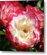 Roses Art Prints Pink White Rose Flowers Gifts Baslee Troutman Metal Print