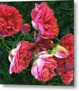 Roses Roses Metal Print