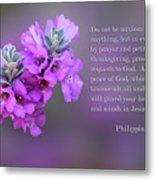 Rosy Lavender Sage Blossoms Phil.4 V 6-7 Metal Print