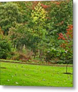 Royal Autumn Colors Metal Print