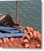 Ruddy Turnstones Perching On Fishing Nets Metal Print