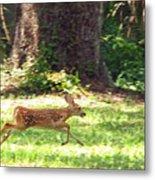 Run Bambi Run Metal Print