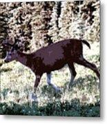 Running Deer Metal Print