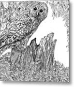 Russian Owl Metal Print
