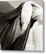 Saddle And Softness Metal Print