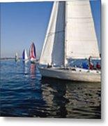 Sailboats Metal Print